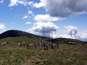 Pla general d'una de les torres que analitza l'impacte del canvi climàtic amb un ramat de vaques