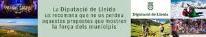 Banner Diputació de Lleida, la força dels municipis.