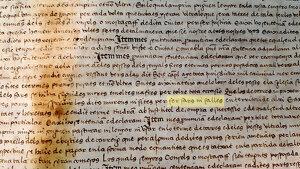 Detall del document amb l'esment a les falles remarcat