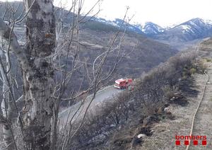 Imatge de la zona afectada per l'incendi de vegetació de Bellver de Cerdanya, del dia 5 de febrer de 2020.