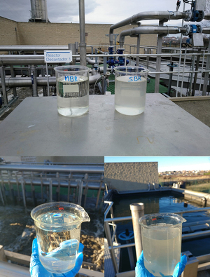 Imatge on es pot veure la comparativa de l'aigua tractada a la depuradora d'Alcarràs