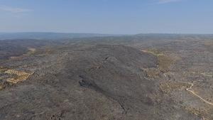 Pla aeri captat amb dron de la zona cremada per l'incendi de Ribera d'Ebre