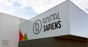 Imatge de la nau d'Animal Sapiens a Lleida