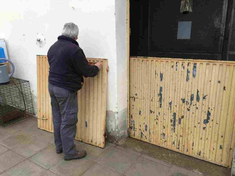 Imatge del Refugi dels Peluts de Lleida