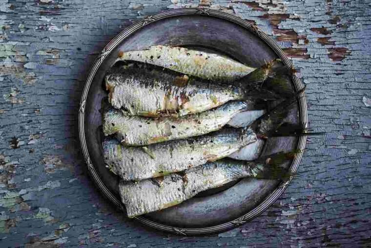 Imatge d'unes sardines