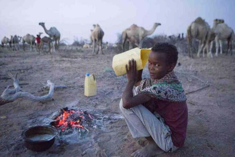Un nen pastor de camells beu llet d'un dels animals que cuida al desert del nord de Kènia