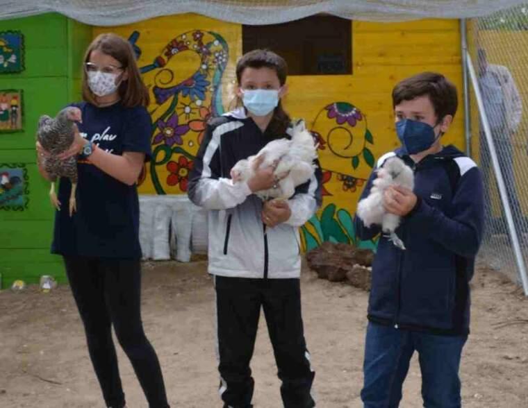 Imatge de tres alumnes amb una gallina cadascun