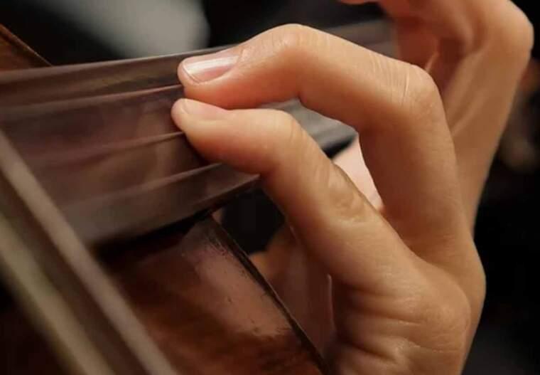 Imatge d'un músic tocant el violí