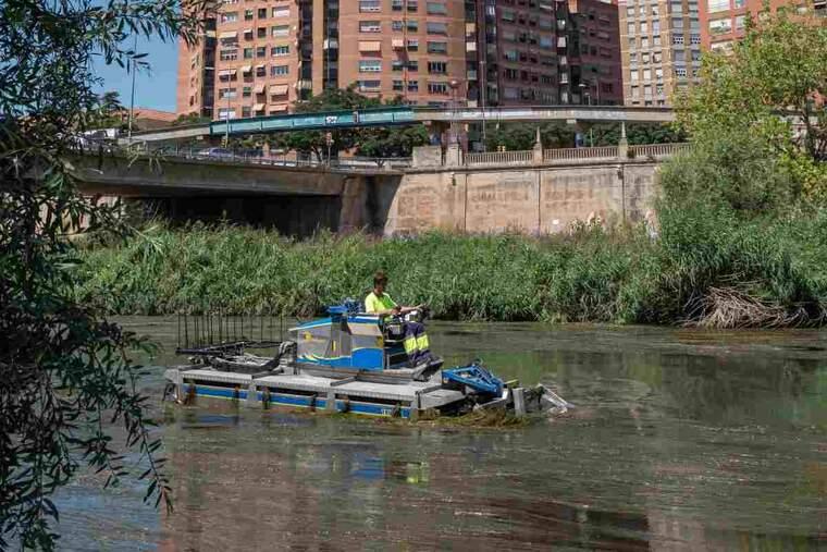 Imatge del riu Segre al seu pas per Lleida