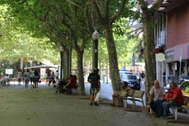 Pla general de gent asseguda i passejant per l'ombra al Passeig de Pere III