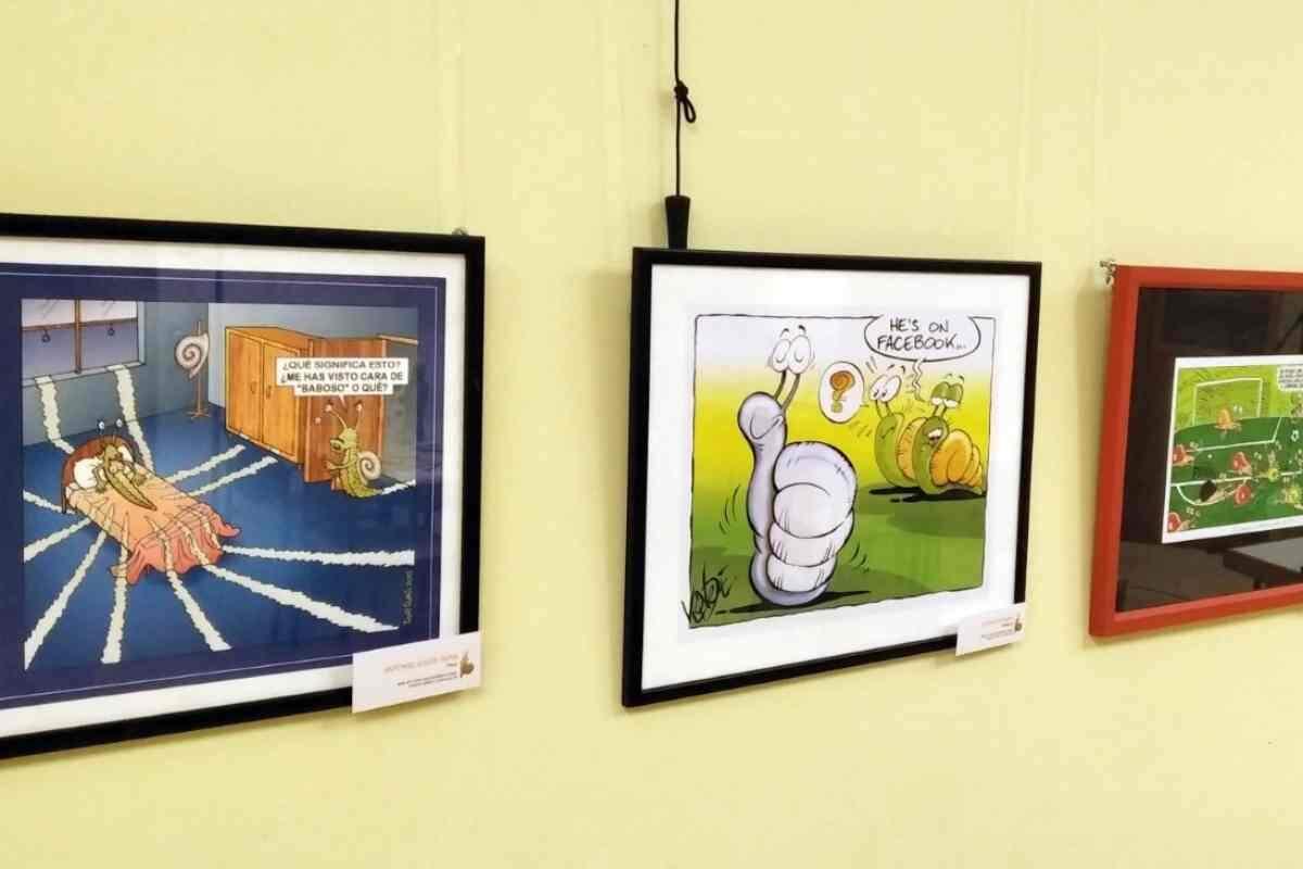 Imatge d'algunes de les obres exposades a la Fecoll
