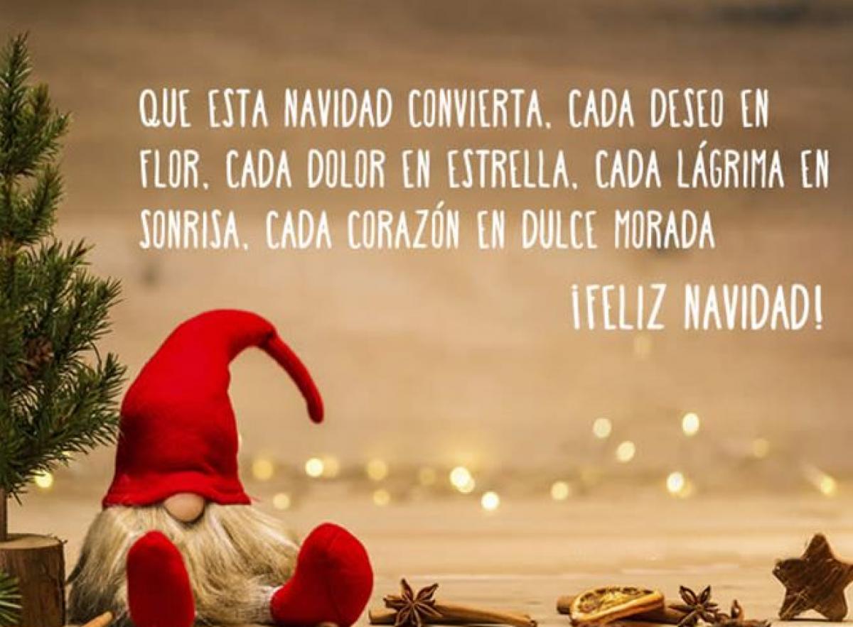 12 Deseos De Navidad Para Compartir Y Reflexionar