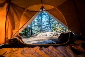 acampar en USA