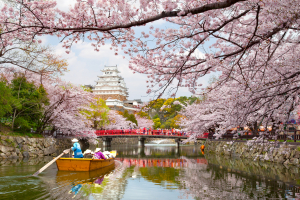Jardín japones con flores