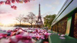 Lugares turísticos que no te puedes perder en Francia.