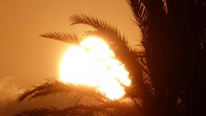 El sol i la calor seran els protagonistes aquests properes dies