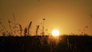 El sol i la calor, tornaran a marcar la jornada d'aquest diumenge