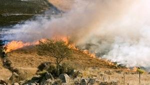 Imatge d'un incendi a l'Àfrica