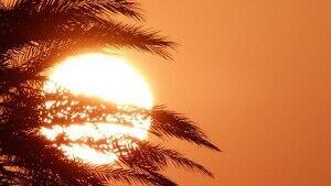 La calor cada cop és més forta arreu del planeta