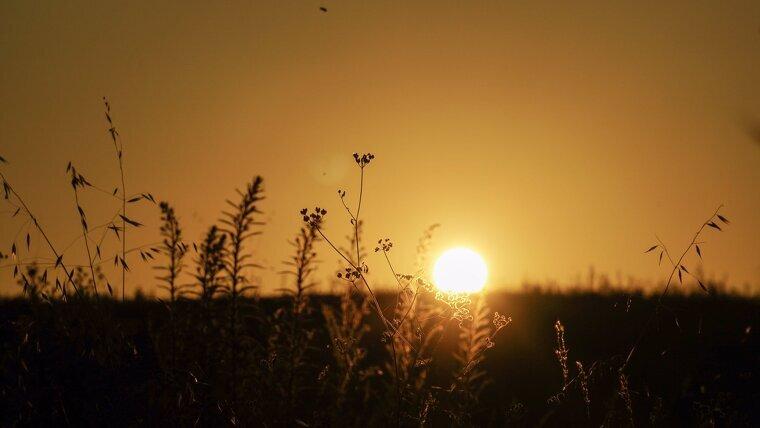 El sol i la calor, tonaran a marcar la jornada d'aqeust diumenge