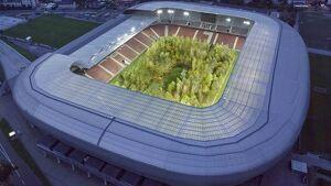 Imatge de l'estadi amb els 300 arbres plantats