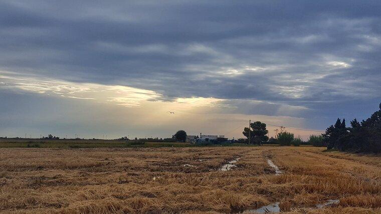 El sol i els núvols es combianran amb algun ruixat dispers