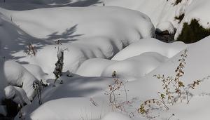 Imatges d'acumulació de neu al Pallars Sobirà