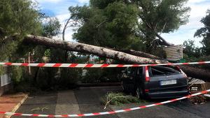 Les ventades poden ser huracanades aquest diumenge al sud de Catalunya