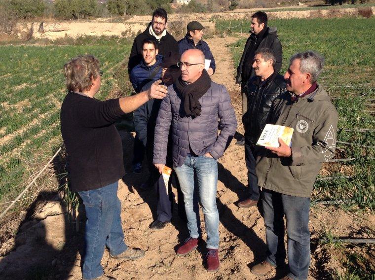 Representants de la regidoria de Comerç de Valls han visitat el camp de calçots dels germans Mateu.