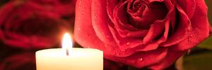 Vela blanca y rosas