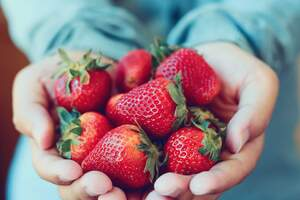 Deliciosas y nutritivas, las fresas son excelentes a cualquier hora del día.