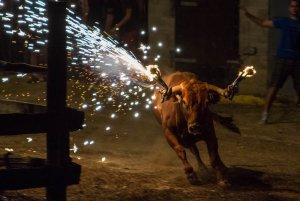 Imatge d'arxiu de la festa del bou embolat