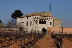 L'Heretat Oller del Mas, a la vora de Manresa, està sota l'empara de la DO Pla de Bages