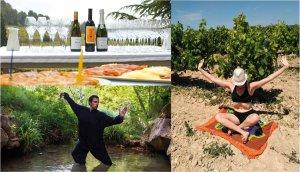Gaia: Wine & Soul, a Albet i Noya