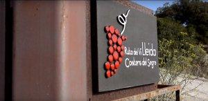 La Ruta del Vi de Lleida - DO Costers del Segre