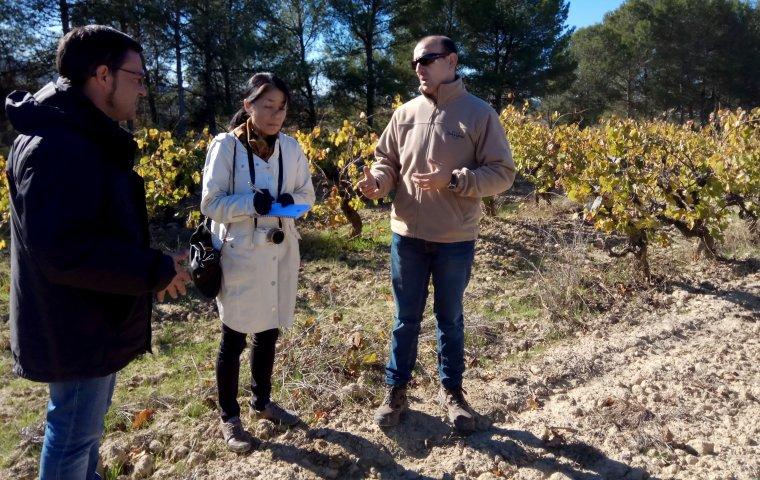 La periodista, durant la visita a les vinyes de Juvé & Camps