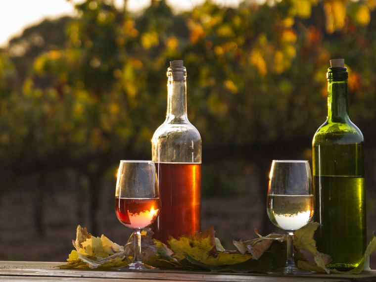 Primers vins de la collita 2017 de Segura Viudas