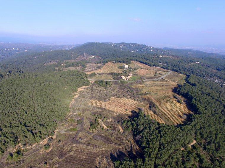 Can Sumoi, la nova finca de Raventós i Blanc per fer vins naturals d'alçada