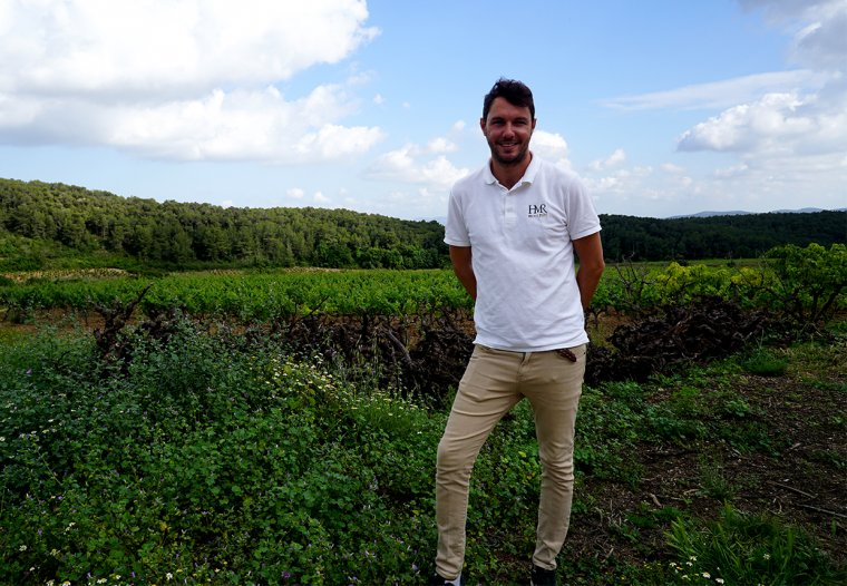 Alejo Peris, nou director comercial de MontRubí, a les vinyes de la propietat