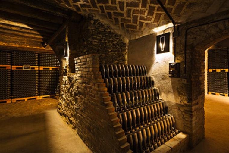 Caves de Vins El Cep