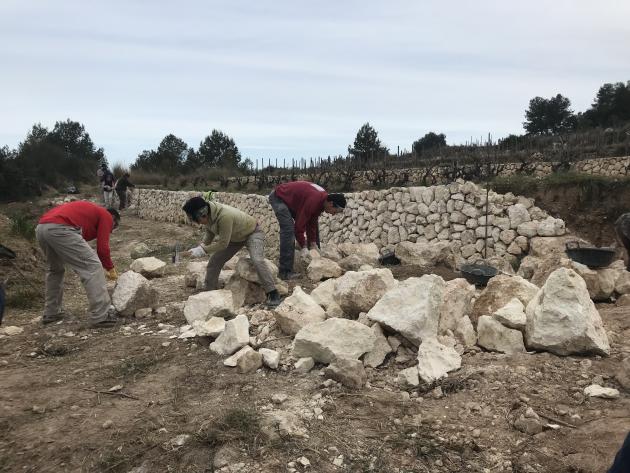 Fent marges de pedra seca