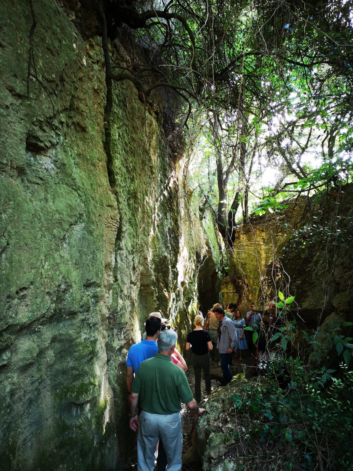 Llopart ha convidat a passejar enmig de les esquerdes de la roca calcàrea