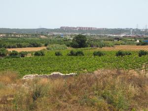 Vil.la romana del Mas dels Frares