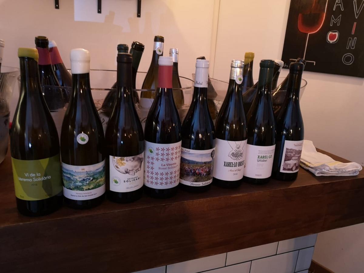 Els vins de totes les edicions de la Verema Solidària