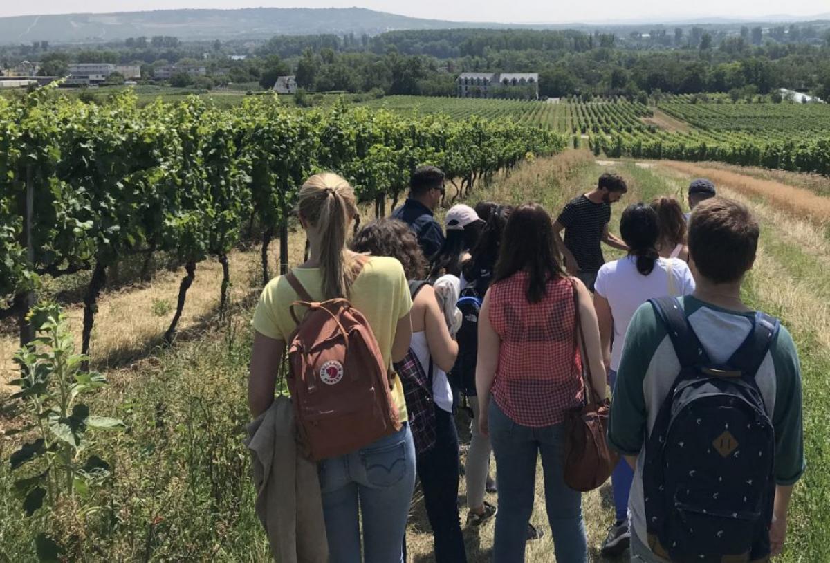 Estudiants URV a Alemanya