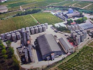 Les instal·lacions de Vins Font són a Castellet i la Gornal
