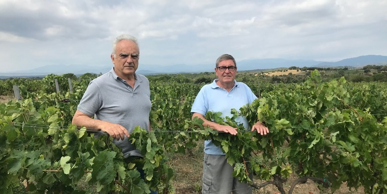 En Pepe Iglesias i l'August Sánchez a la vinya de l'August