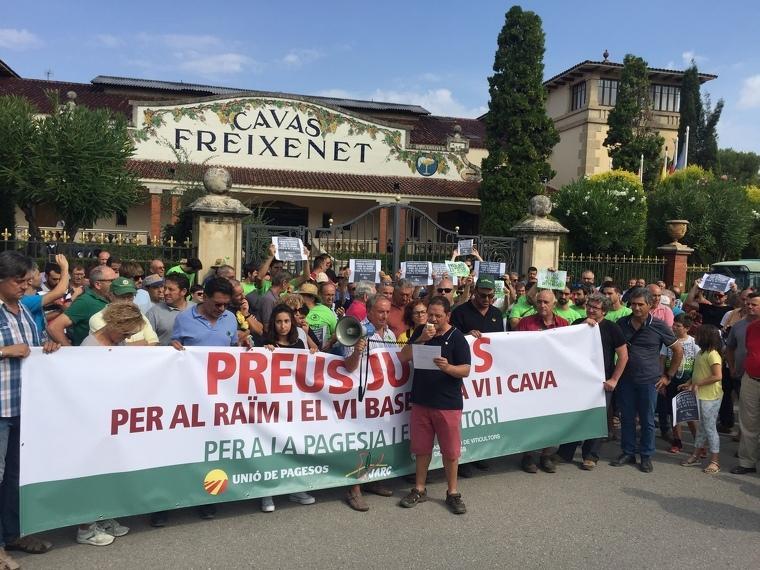 El moment de la lectura del manifestat davant Freixenet
