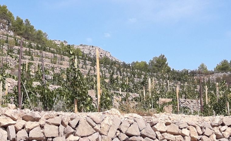 La Solana Alta, zona superior