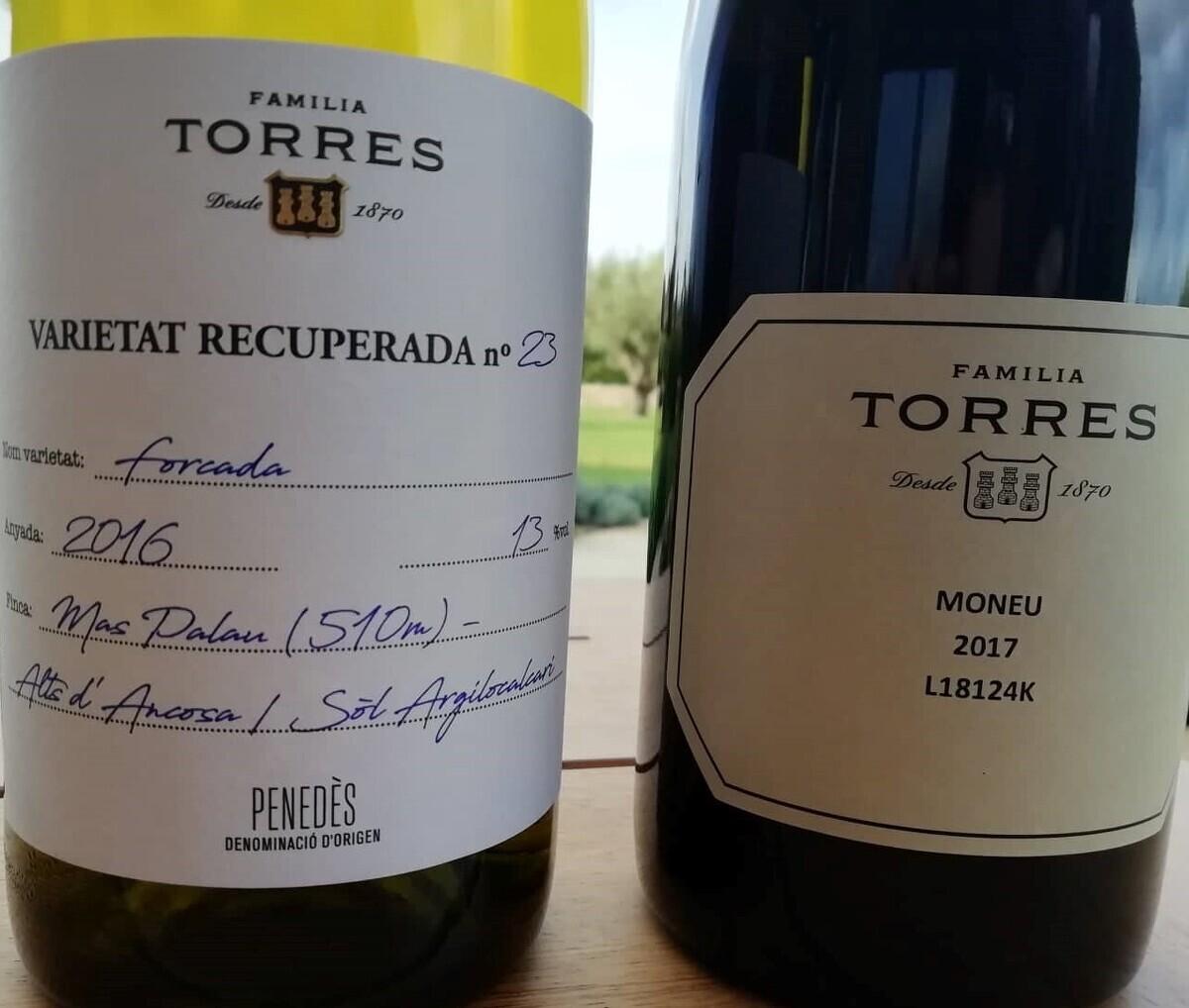 Els vins Forcada i Moneu elaborats amb varietats ancentrals recuperades